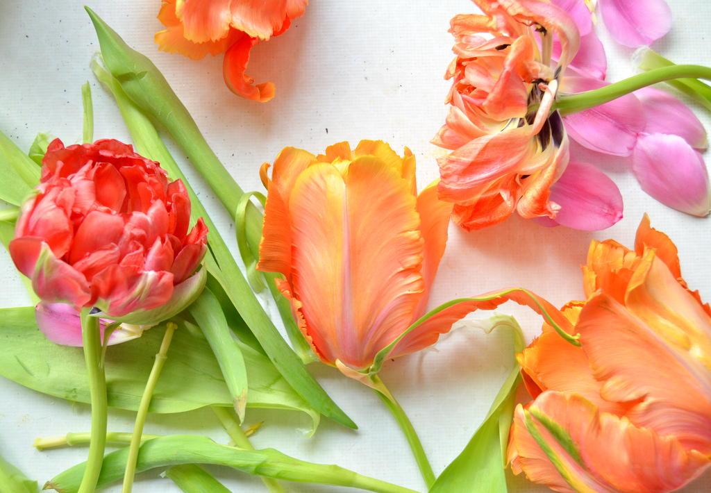 byClaire-haakkatoen-bloemenhaken  (4)