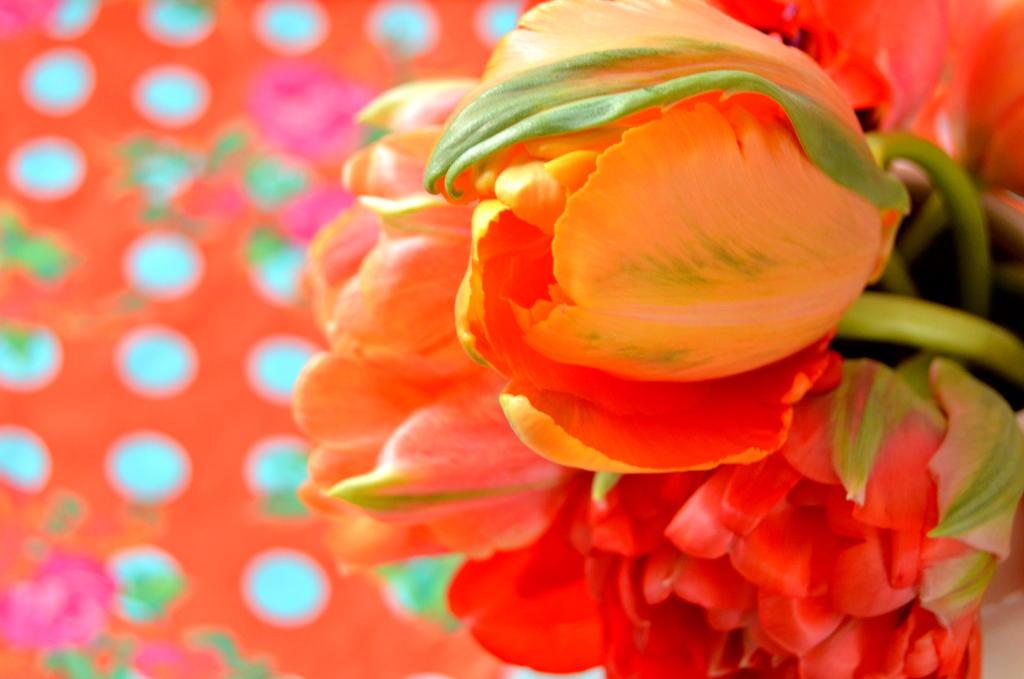byClaire-haakkatoen-bloemenhaken  (5)